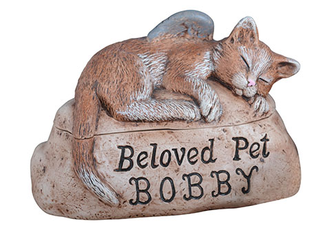 Beloved Pet Cat with Custom Etching Image