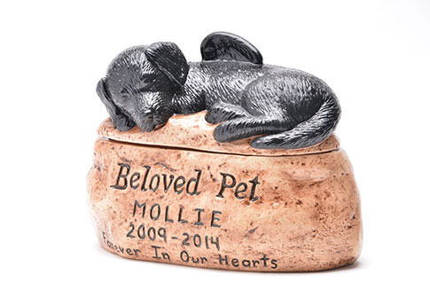 Beloved Pet - Custom Colour & Etching Image