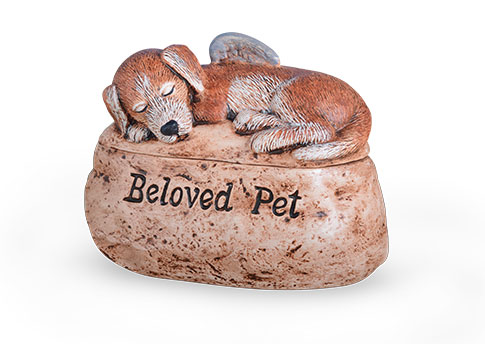 Beloved Pet - Dog Image