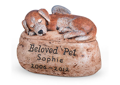 Beloved Pet Dog with Custom Etching Image