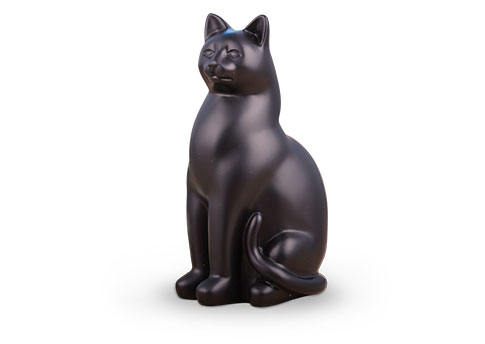 Elite Cat - Black Image