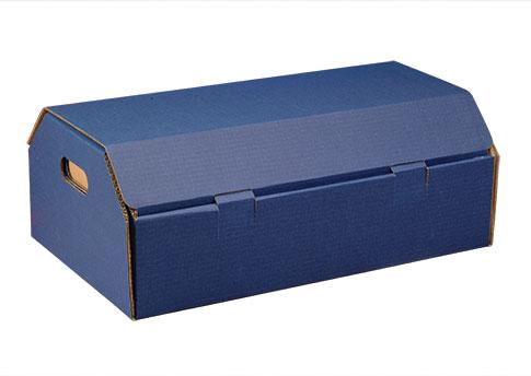 Cardboard Casket Image