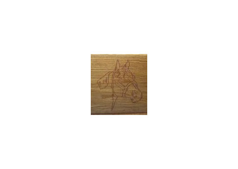 Engraved Horse Head Image